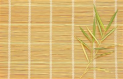 roleta z bambusem