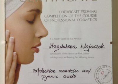exfoliation-mandelic-and-pyruvic-acids-CLARENA
